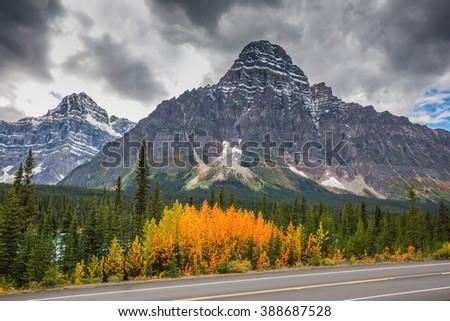 Autumn in Banff. Bright orange bush beside the road. Majestic mountains and glaciers on the background of the cloudy sky.  Canadian Rockies, Banff National Park - stock photo