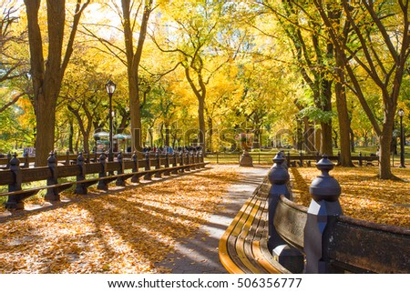 Autumn in Central Park New York City with colorful trees