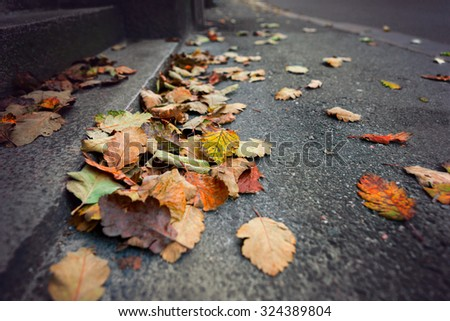 autumn in city with leaves on sidewalk - stock photo
