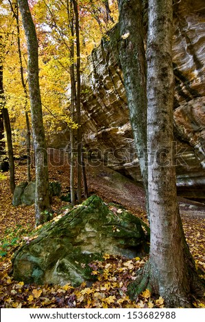Autumn in Illinois Canyon at Starved Rock State Park, Utica, Illinois. - stock photo