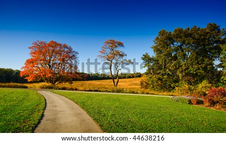 Autumn in New England - stock photo