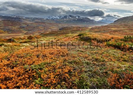 Autumn in northern Sweden - stock photo