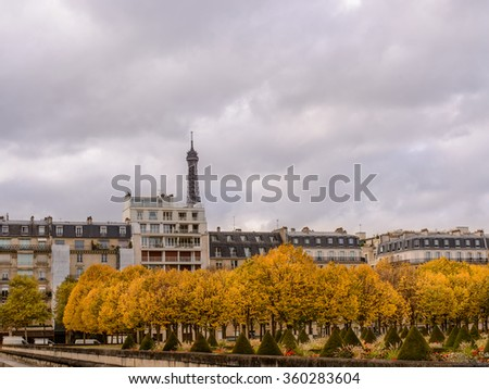 Autumn in Paris , town homes among yellow trees in the background Eiffel tower - stock photo