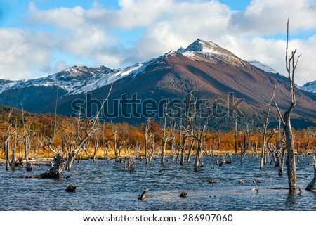 Autumn in Patagonia. Lake Escondido in the middle of the Cordillera Darwin, part of Andes, Isla Grande de Tierra del Fuego, Argentina side - stock photo