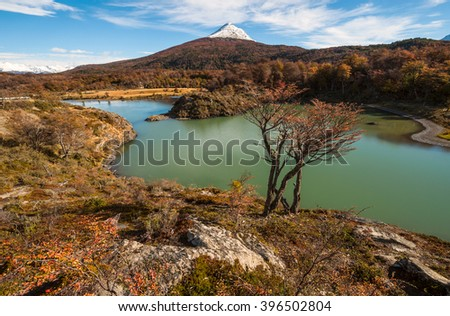Autumn in Patagonia. Tierra del Fuego, Beagle Channel, the Argentina side - stock photo