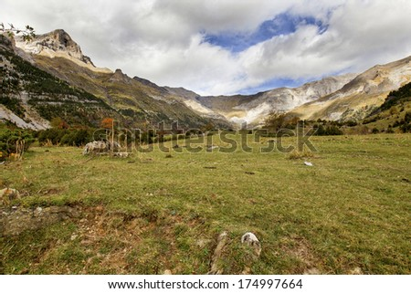 Autumn in Pineta valley in Pyrenees Aragones