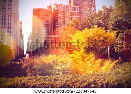 Autumn in the City  - stock photo