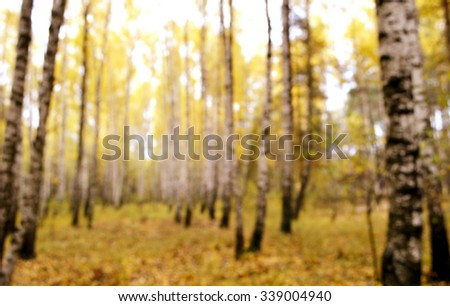 Autumn in the forest.Colorful autumn leaves.Abstract motion blurred trees in a forest