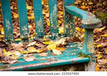 Autumn in the park. Golden leaves on the old wooden bench and on the ground. Closeup. - stock photo
