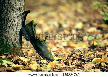 Autumn in the park old vintage - stock photo