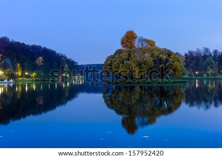 Autumn in the park. Picturesque island of overgrown trees with yellowing leaves on a large pond in the blue twilight