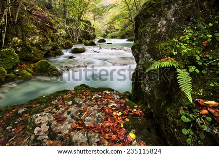 Autumn in the river - stock photo