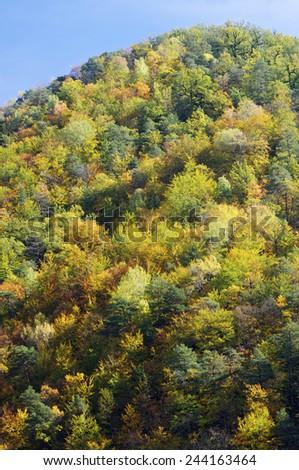 Autumn in Vio Valley, Pyrenees, Huesca, Aragon, Spain - stock photo