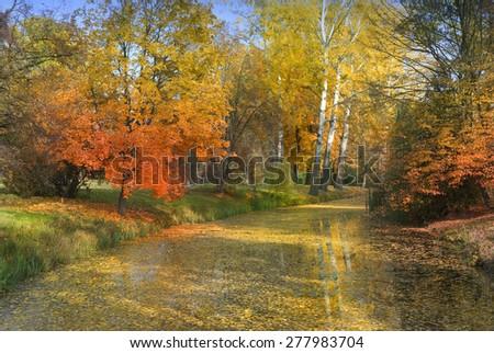 autumn landscape  - stock photo
