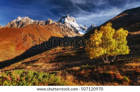 Autumn landscape and snowy peaks in the sun. Main Caucasian Ridge. Mountain View from Mount Ushba Mheyer, Georgia. Europe.
