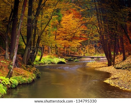 Autumn landscape, colorful leaves on trees, morning at river after rainy night. Beautiful landscape scenery. Autumn river in color. Autumn weather. trees reflection in fall river. - stock photo
