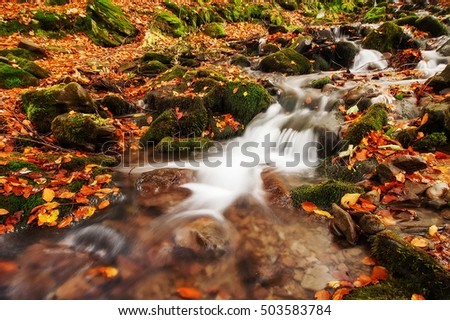 autumn landscape. colorful trees and beautiful waterfall in deep gold forest