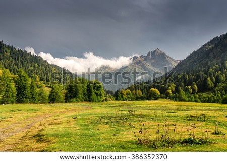 autumn landscape. fog from conifer forest surrounds the mountain top in morning light - stock photo