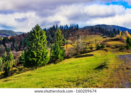 autumn landscape. forest on a hillside covered with red and yellow leaves. over the mountains against blue sky clouds