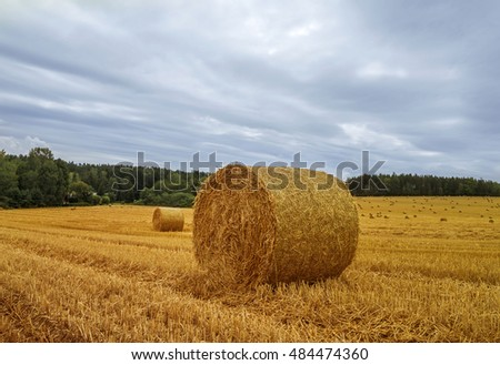 Autumn landscape. Harvest field with straw bales.