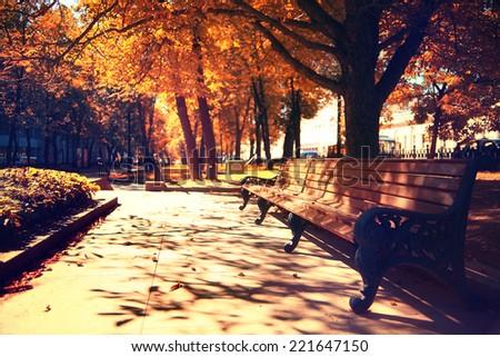 autumn landscape in the city park - stock photo