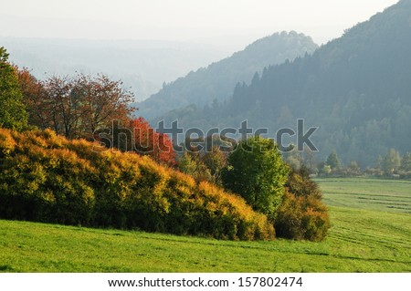 Autumn landscape, in the foreground color shrubs and trees, wooded mountains in the background fading into a foggy haze - stock photo