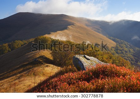 Autumn landscape in the mountains. Stone and bush blueberries. Sunny day. Carpathians, Ukraine, Europe - stock photo