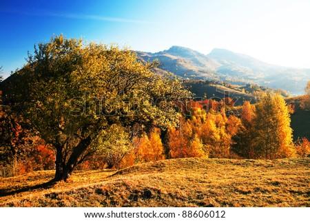 Autumn landscape in the Romanian Carpathians - stock photo