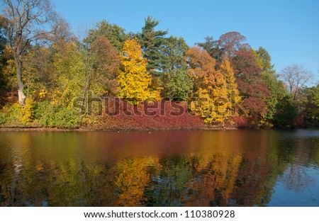 Autumn landscape of river and trees in sunny day
