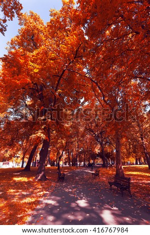Autumn landscape of trees and leafs. Autumn view of a park in Belgrade, Serbia
