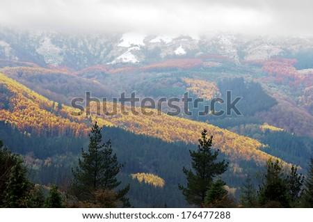 autumn landscape on mountains with snow - stock photo