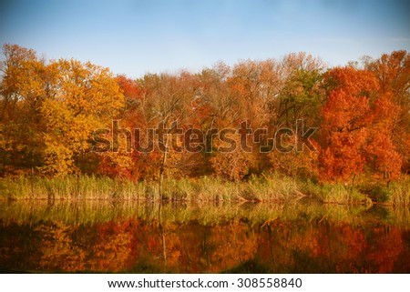 Autumn Landscape. Park in Autumn. Bright colors of autumn in the park by the lake with ducks - stock photo