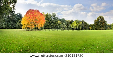 Autumn Landscape. Park in Autumn. Panorama. - stock photo