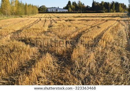 autumn landscape, sloping field, forest and a home away - stock photo
