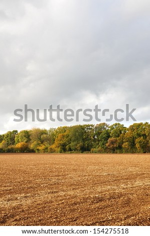 Autumn Landscape View of a Harvested Field