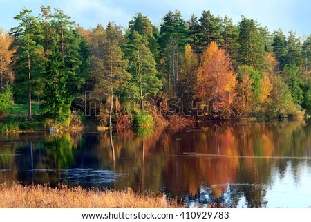 Autumn landscape with a river and pine forest.