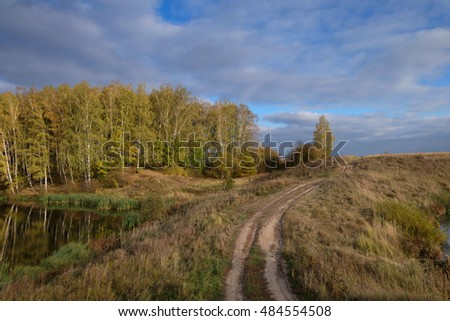 autumn landscape with a view of a dirt road leading to the yellowing woods
