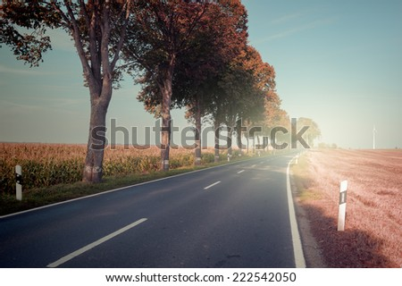 Autumn landscape with countryside road - stock photo