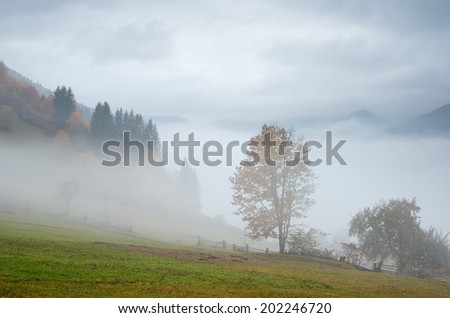 Autumn landscape with fog in a mountain village. Wooden fence in a rural yard. Carpathian mountains, Ukraine, Europe  - stock photo