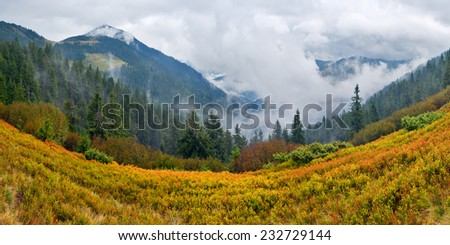 Autumn Landscape with fog in mountains - stock photo