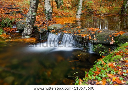 Autumn landscape with river and beautiful foliage - stock photo