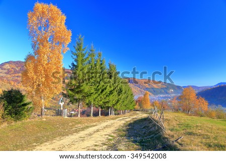 Autumn landscape with sunny road near golden trees in Bran, Romania - stock photo