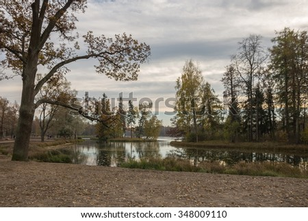 Autumn landscape with trees near the water in surrounding area of Saint-Petersburg