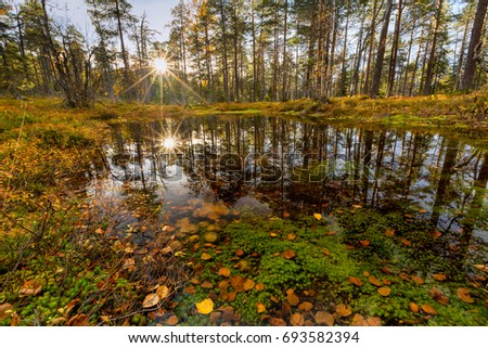 Autumn landscape with water on foreground in forest, Finland, Lapland