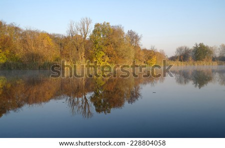 autumn landscape with yellow tree on coast of the river and reflection in water  - stock photo