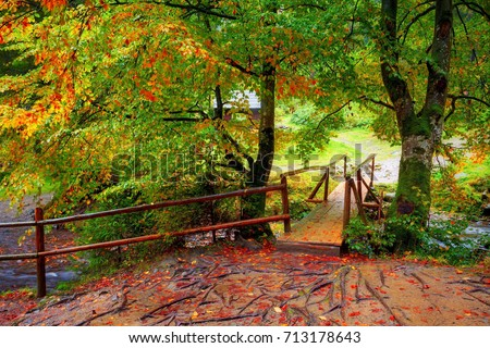 Autumn landscape. Wooden bridge in forest between trees