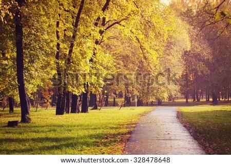 Autumn lane in the city park - stock photo