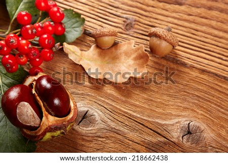 autumn leaf and chestnuts - stock photo