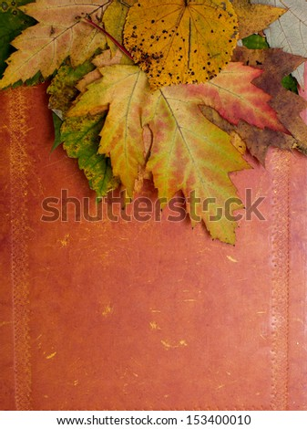 autumn leafs on rustic paper surface - stock photo