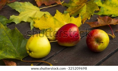 Autumn leaves and apples - stock photo